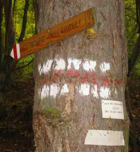 Tafeln an einem Baum