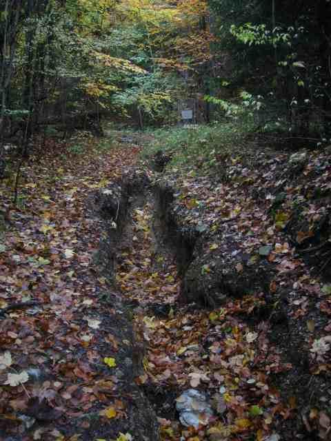 tiefe Rinne im Forstweg