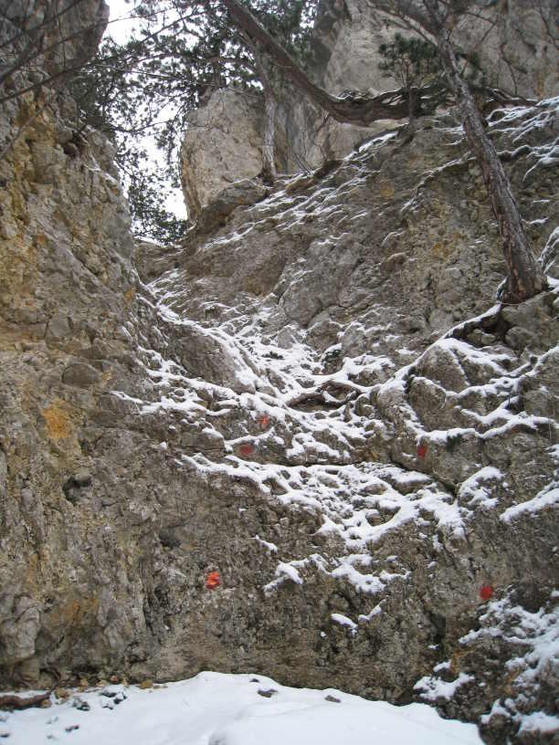 Fels und Schnee