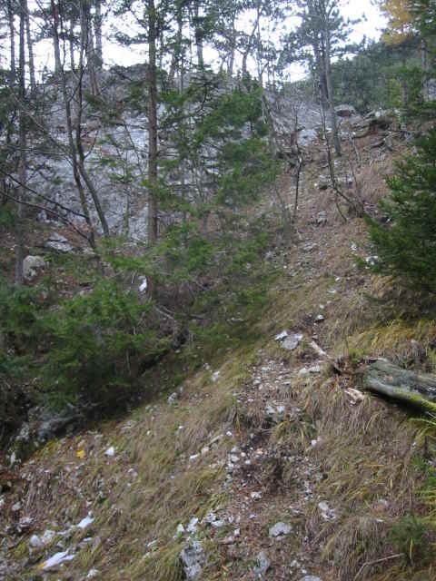 Steigspur