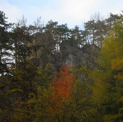 Blick zur Ruine Scheuchenstein