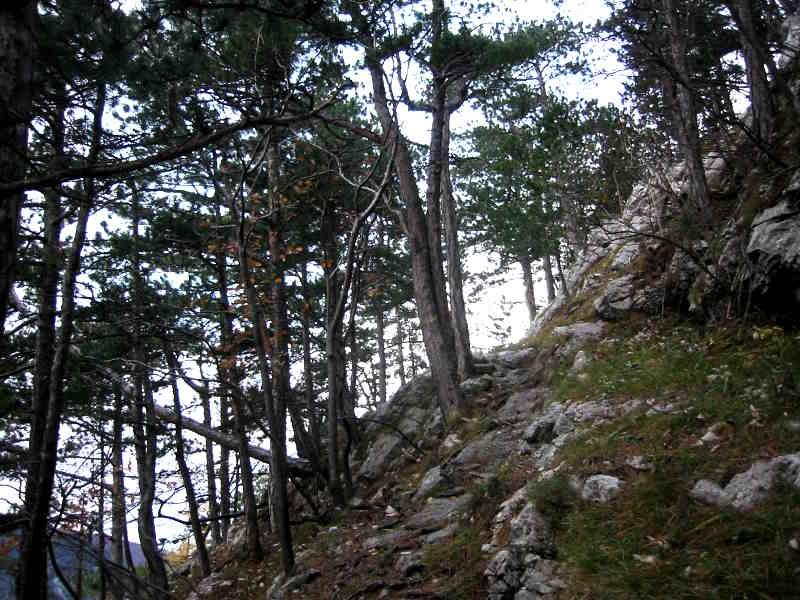 der Steilhang