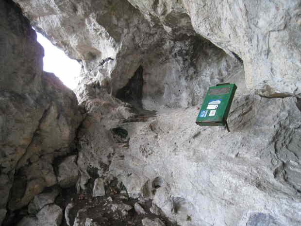 Halbhöhle