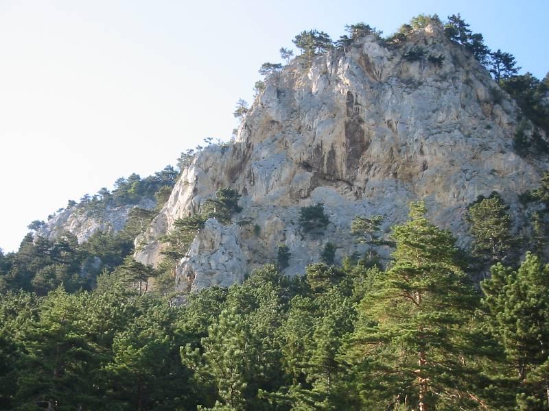 Weningerturm
